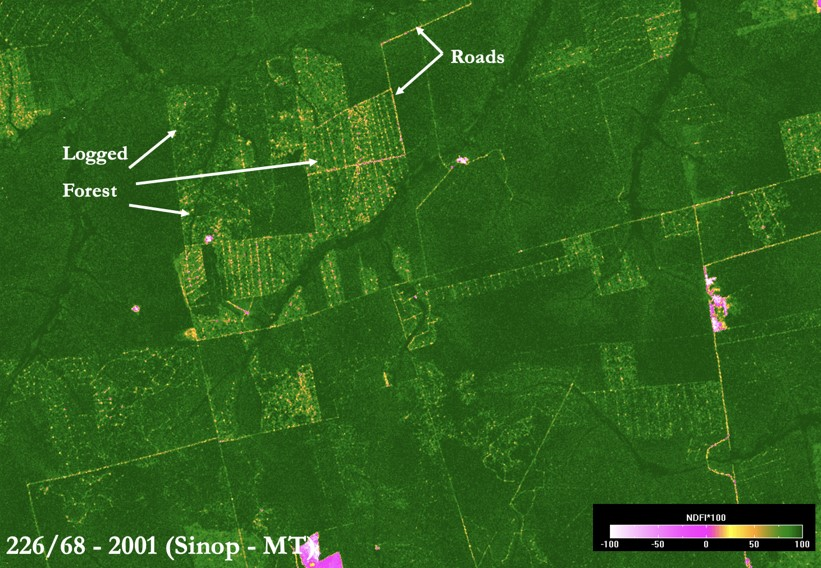 This illustration of NDFI as an aid to landscape interpretation (here, selective logging) shows intact forest as dark green, forest disturbance in orange-yellow, deforestation in magenta, and bare soil in white. Figure from Souza et al., 2005).