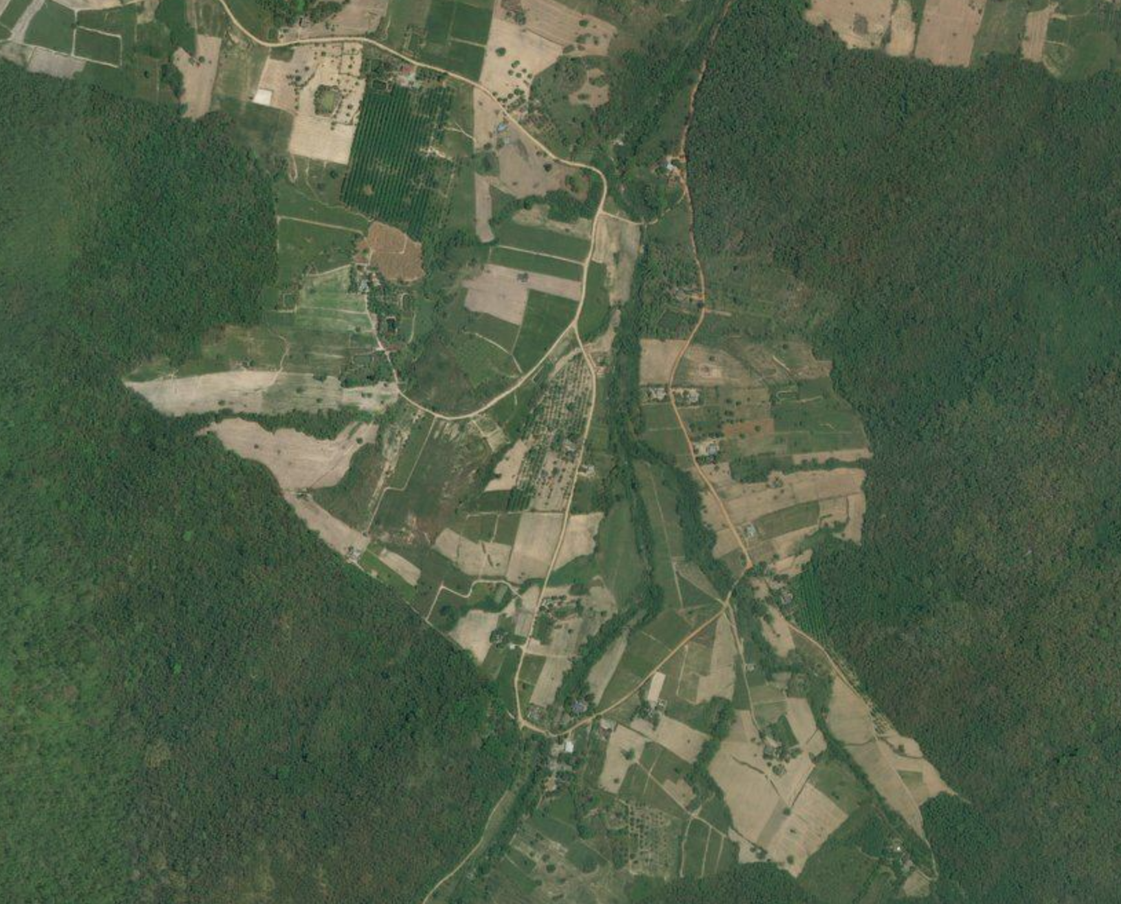 Crops surrounded by forests in Thailand.