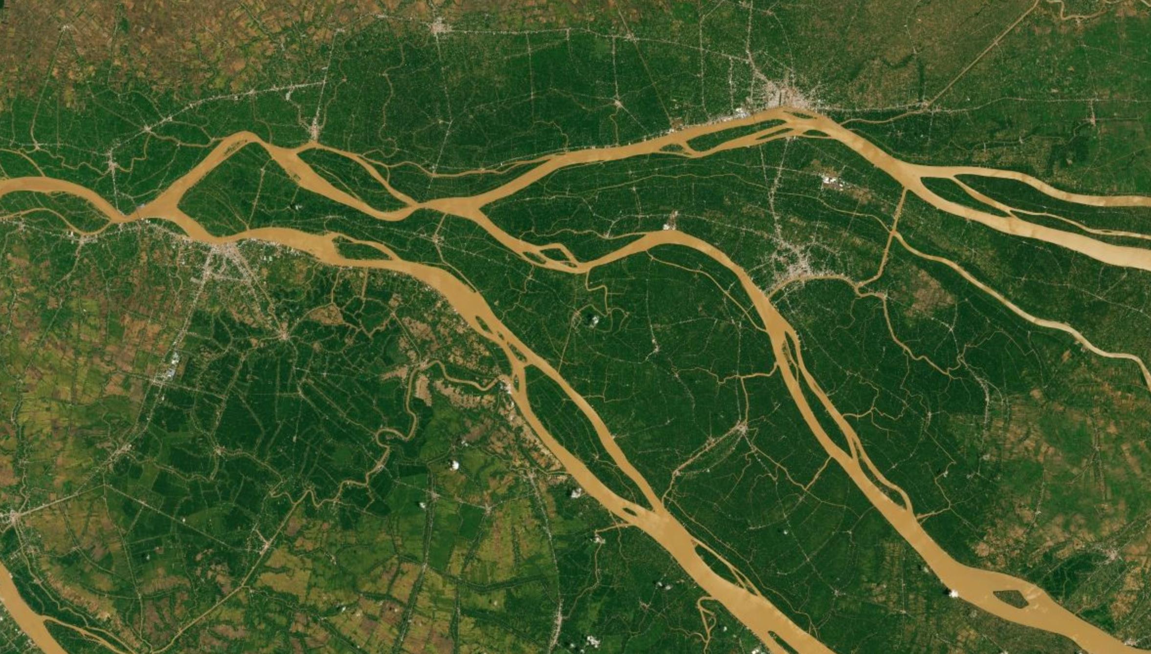 Delta with crop fields in Viet Nam.